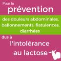 Lactolérance 1day - 1 année